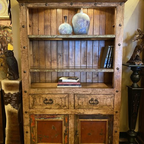 Chameleon Bookcase